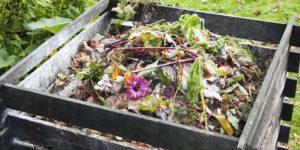 Semaine du compostage @ Allées de la République