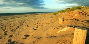 Dune et plage