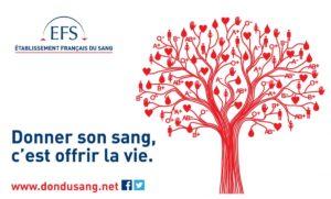 Collecte de sang @ Lycée Marc Bloch