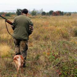 Illustration : Fermeture de la chasse